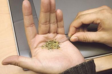 По подозрению в хранении наркотических средств задержали 47-летнего жителя Арзамаса