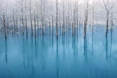 Голубой пруд Blue Pond Biei. Природное чудо Страны Восходящего Солнца