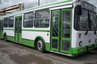 В столкновении «Лады Гранта» с ЛиАЗ 5256 в Арзамасе пострадала пенсионерка