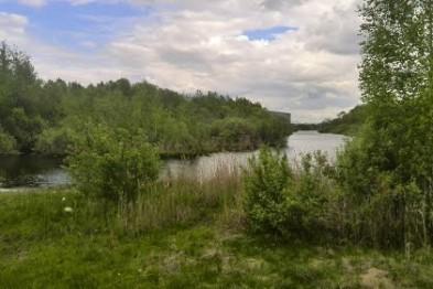 Двое подростков до смерти забили мужчину в Нижнем Новгороде