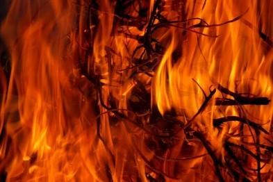 В Арзамасском районе сгорела ферма