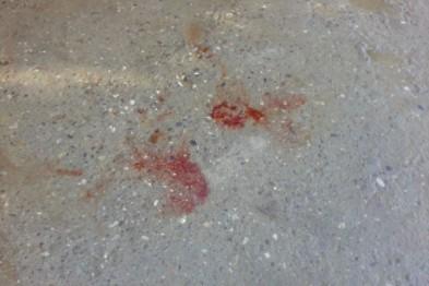 В результате поножовщины возле кафе в Нижнем Новгороде пострадал мужчина