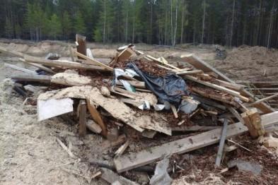 В Нижнем Новгороде СК ищет организаторов несанкционированной свалки, повлекшей отравление почвы