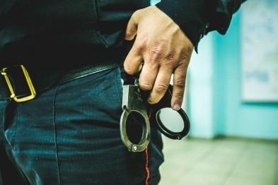 Пьяный житель Пензы покусал полицейского, за что заплатит штраф