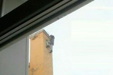 В Арзамасе мужчина попытался покончить с собой, прыгнув с крыши дома (ФОТО) (ВИДЕО)
