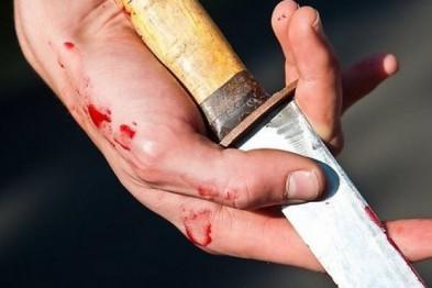 Свыше 20 ударов ножом нанес гость хозяину в ходя пьяной ссоры