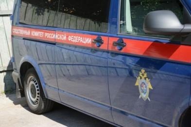 Уголовник, забивший соседа до смерти из-за щенка в скором времени предстанет перед судом