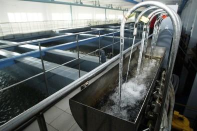 Нижегородский водоканал отложил продажу доли в арзамасском предприятии