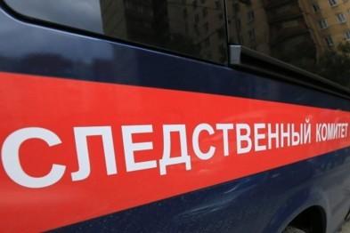 В Балахнинском районе отец с сыном погибли в лесу при невыясненных обстоятельствах