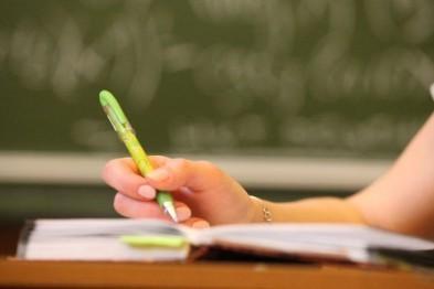 В Арзамасе начинается прием заявлений на обучение в 1 классе