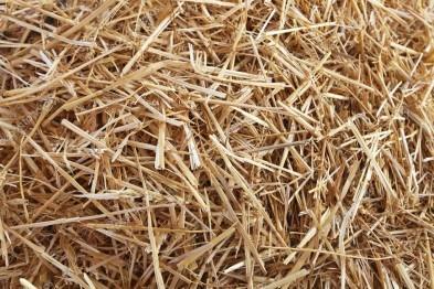 Пресс для соломы и сена