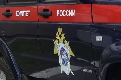 В Нижегородской области педофила приговорили к 11 годам заключения