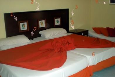 Где обитают постельные клопы?
