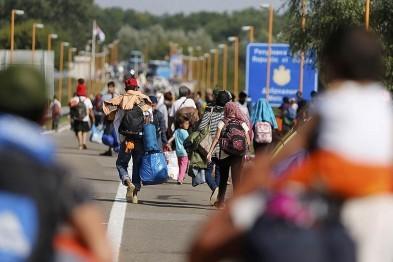 Коротко о мигрантах