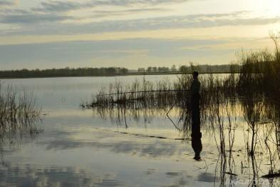 С сегодняшнего дня и до 15 июня на территории Нижегородской области запрещена рыбалка