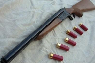 14 единиц гладкоствольного оружия изъяли полицейские Арзамаса, проверяя условия его хранения