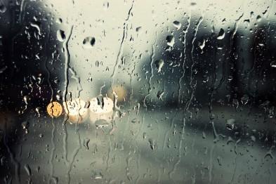 Сентябрьская погода ожидает арзамасцев в выходные