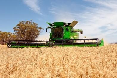 Нижегородская область бьет рекорды по сбору урожая зерна