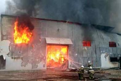 В селе Шерстино в результате поджога сгорело овощехранилище