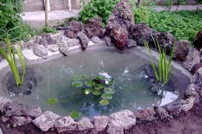 Строим водоем своими руками