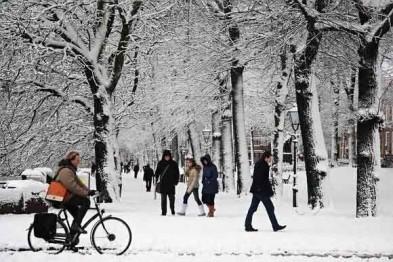 В Арзамасе, несмотря на зимнюю погоду не прекращаются кражи велосипедов