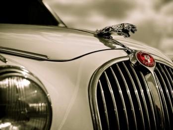 Jaguar: начало и самые известные модели (фото)